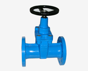 CAT IRON RESILIENT GATE VALVE,RS